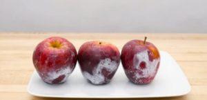 Чем обрабатывают яблоки для более длительного хранения