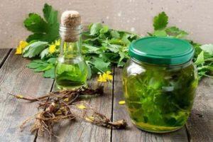 Как лучше всего хранить сок чистотела в домашних условиях