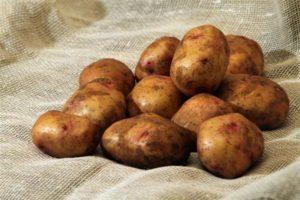 Почему чернеет картошка внутри при хранении и что делать