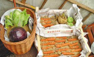 Правильное хранение овощей в домашних условиях