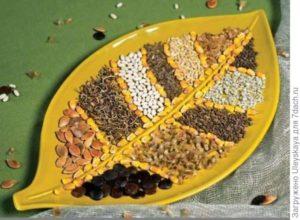Сколько составляет срок годности семян овощей: таблица